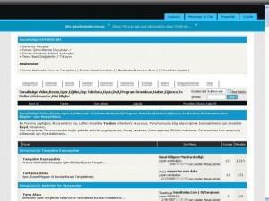 2007'nin SanalGolge.Com'undan bir görünüş (veriler web arşivinden çekildiği için görüntü tam olarak çıkmamıştır).